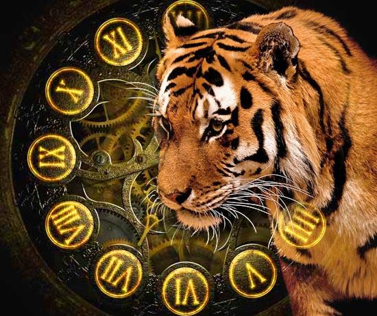 Картинки тигрят на новый год